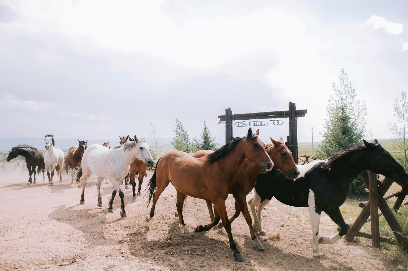 JZ Events-Jennifer Zabinski-Destination Wedding Planner-Brush Creek Ranch Wyoming-Romance On The Ranch-0002_180729